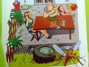 Ενημέρωση για τα κουνούπια