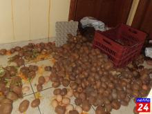 Αγρότες στα γραφεία βουλευτών Πέλλας