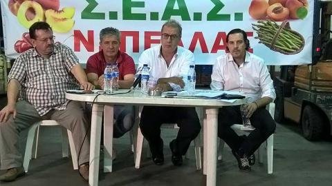 Σύνδεσμος εκπροσώπησης αγροτικών οργανώσεων Πέλλας